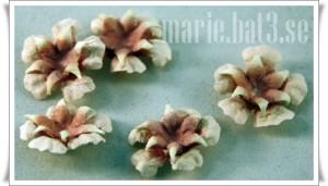 flower combo1
