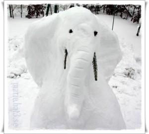 elefant 200