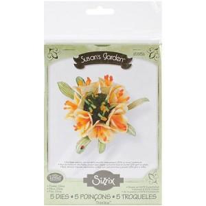 clivia-flower_4954705